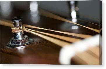 Guitar String Windings Canvas Print by C Ribet