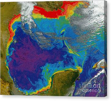 Gulf Of Mexico Dead Zone Canvas Print by Science Source