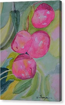 Gulf Ruby Plums Canvas Print by Warren Thompson