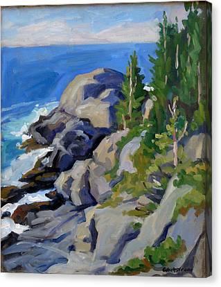 Gull Rock Monhegan Canvas Print