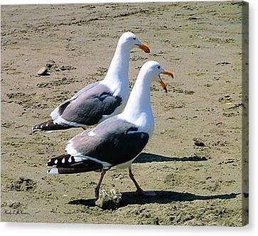 Canvas Print featuring the photograph Gull Talk by Wendy McKennon