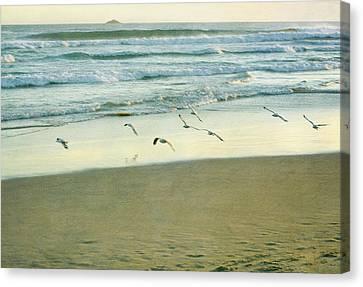 Gulls Flying Canvas Print by Jill Ferry