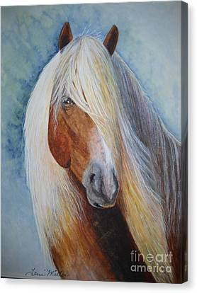 Halflinger Canvas Print by Terri Maddin-Miller