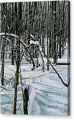 Haliburton Ontario Canvas Print