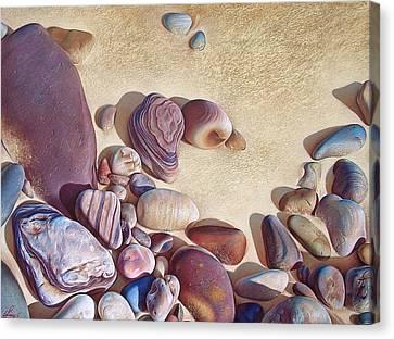 Hallett Cove's Stones Canvas Print by Elena Kolotusha