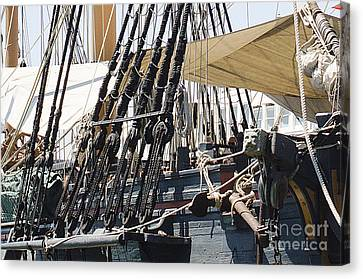 Halyards And Sheets Canvas Print by MaryJane Armstrong