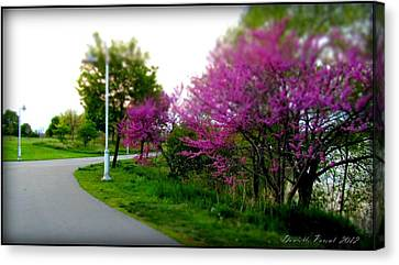 Canvas Print featuring the photograph Hamilton Harbor Front Pretty In Pink by Danielle  Parent