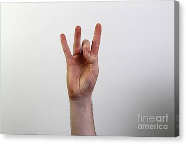 Hand Signing Number Eight Canvas Print by Photo Researchers, Inc.