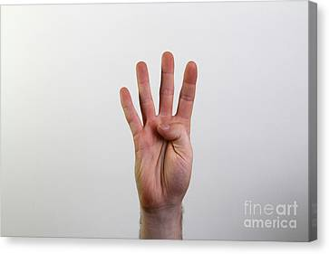 Hand Signing Number Four Canvas Print by Photo Researchers, Inc.