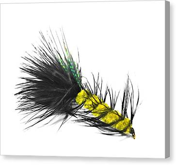 Hand Tied Fishing Lure Canvas Print by Susan Leggett