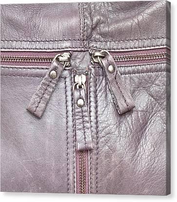 Handbag Canvas Print by Tom Gowanlock