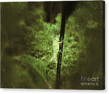 Hanging On Canvas Print by Christy Bruna