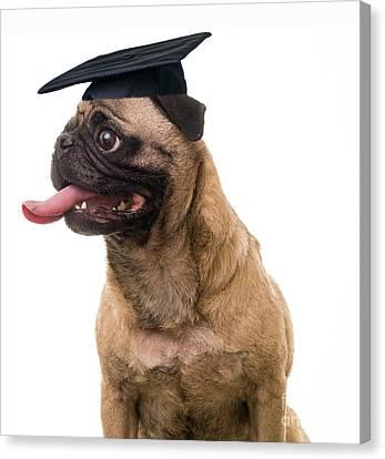 Happy Graduation Canvas Print by Edward Fielding