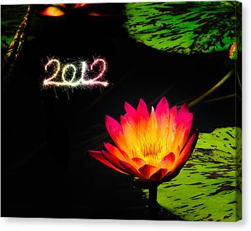 Happy New Year 2012 Canvas Print by Michael Taggart