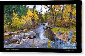 Happy Place In The Woods Panorama Poster  Canvas Print by James BO  Insogna