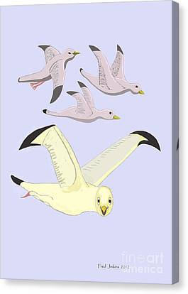 Happy Seagulls Canvas Print by Fred Jinkins
