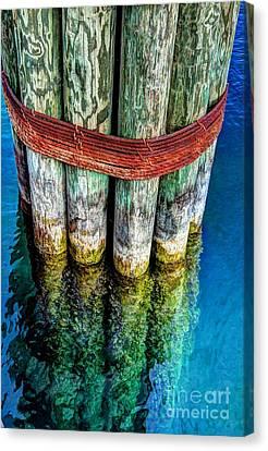 Harbor Dock Posts Canvas Print by Michael Garyet