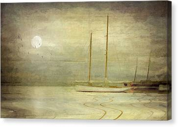 Cape Cod Canvas Print - Harbor Moonlight by Michael Petrizzo