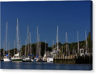 Harbor View Canvas Print by Karol Livote