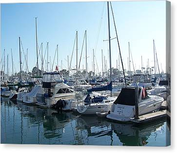 Harbor View Canvas Print by Steve Huang