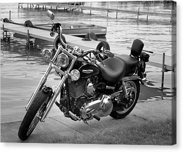 Harley Black And White Canvas Print by Dean Bennett