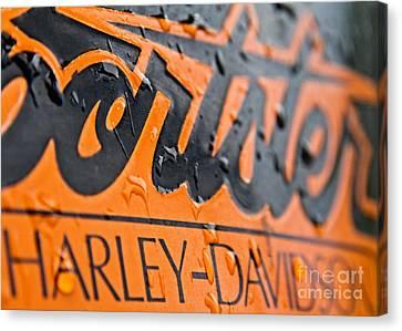 Harley Davidson Logo Canvas Print