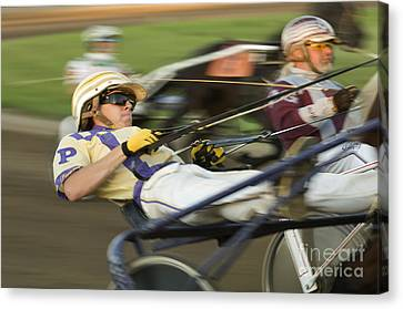 Harness Racing 1 Canvas Print by Bob Christopher