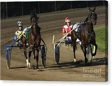 Harness Racing 10 Canvas Print by Bob Christopher