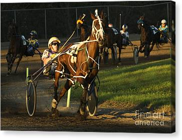 Harness Racing 4 Canvas Print by Bob Christopher