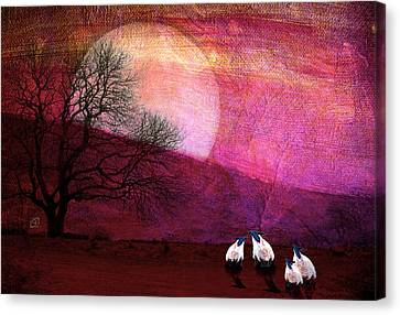 Canvas Print featuring the digital art Harvest Moon Sheep by Jean Moore