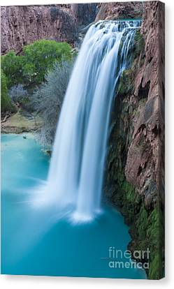 Havasu Falls I Canvas Print by Scotts Scapes