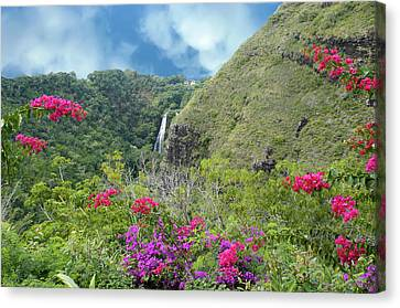 Canvas Print featuring the photograph Hawaii Waterfall by Geraldine Alexander
