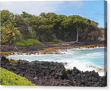 Canvas Print featuring the photograph Hawaiian Paradise by Kerri Ligatich