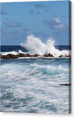 Hawaiian Shore Break  Canvas Print by Kerri Ligatich