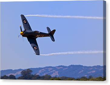 Hawker Sea Fury Canvas Print by Garry Gay