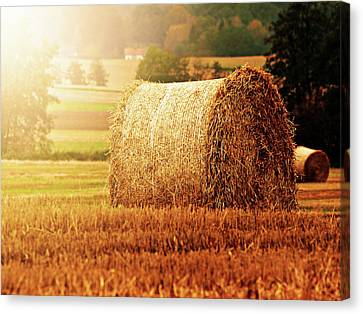 Hay Bale Canvas Print by Photographe