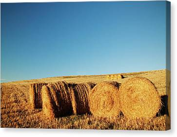 Hay Bales Canvas Print by Matteo Colombo