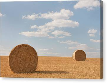 Hay Barrels In Burgundy Region Canvas Print by Niall Sargent