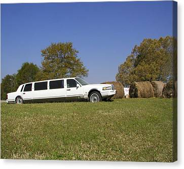 Hay Business Canvas Print by Steve Sperry