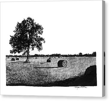 Hayfield Canvas Print by Gary Gackstatter