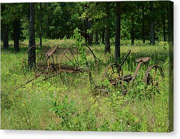 Pastue Canvas Print - Hayrake And Cutter In The Weeds 2 by Douglas Barnett