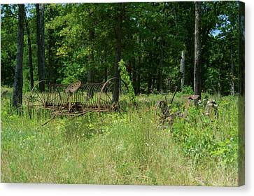 Pastue Canvas Print - Hayrake And Cutter In The Weeds by Douglas Barnett