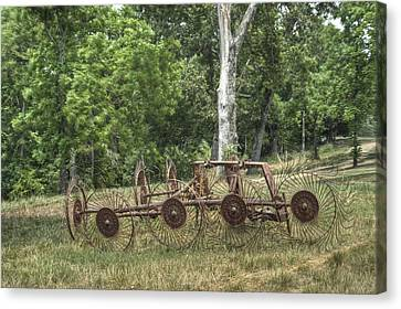 Pastue Canvas Print - Hayrake Put Out To Pasture by Douglas Barnett