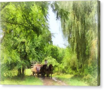 Weeping Willow Canvas Print - Hayride by Susan Savad