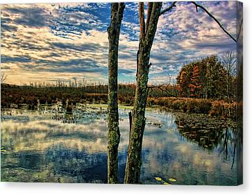 Hd Lakeview Canvas Print by Terry Cork