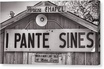 He Paints Sines Canvas Print by Donna Greene