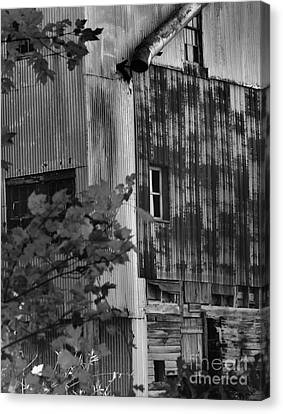 Hearns Feed Mill Canvas Print by Tamera James