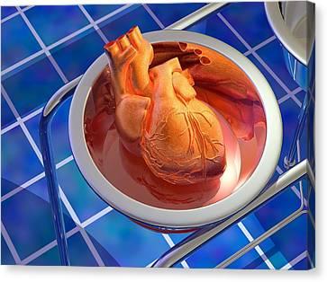 Heart Surgery, Artwork Canvas Print by Laguna Design