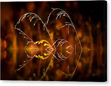 Canvas Print featuring the photograph Heartbeat by Vicki Pelham