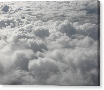 Heavenly Fluff Canvas Print